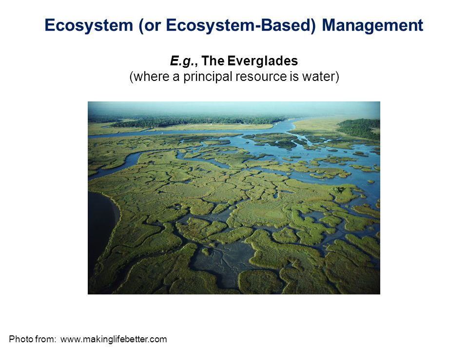 Photo from:   Ecosystem (or Ecosystem-Based) Management E.g., The Everglades (where a principal resource is water)