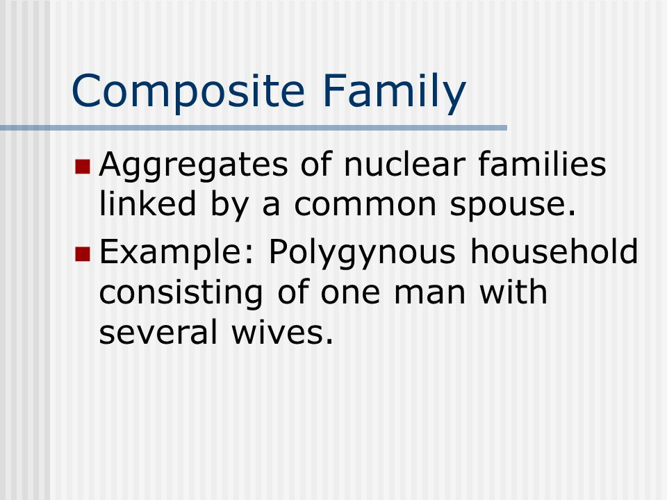 Composite Family Aggregates of nuclear families linked by a common spouse. Example: Polygynous household consisting of one man with several wives.