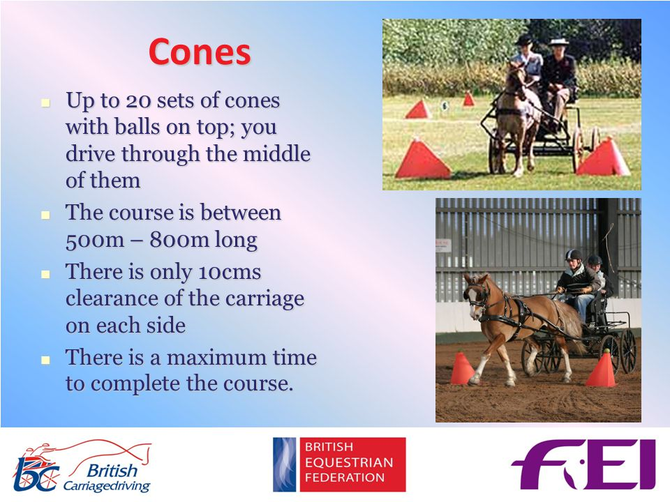 Cones Up to 20 sets of cones with balls on top; you drive through the middle of them Up to 20 sets of cones with balls on top; you drive through the middle of them The course is between 500m – 800m long The course is between 500m – 800m long There is only 10cms clearance of the carriage on each side There is only 10cms clearance of the carriage on each side There is a maximum time to complete the course.