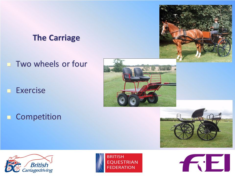 The Carriage Two wheels or four Two wheels or four Exercise Exercise Competition Competition