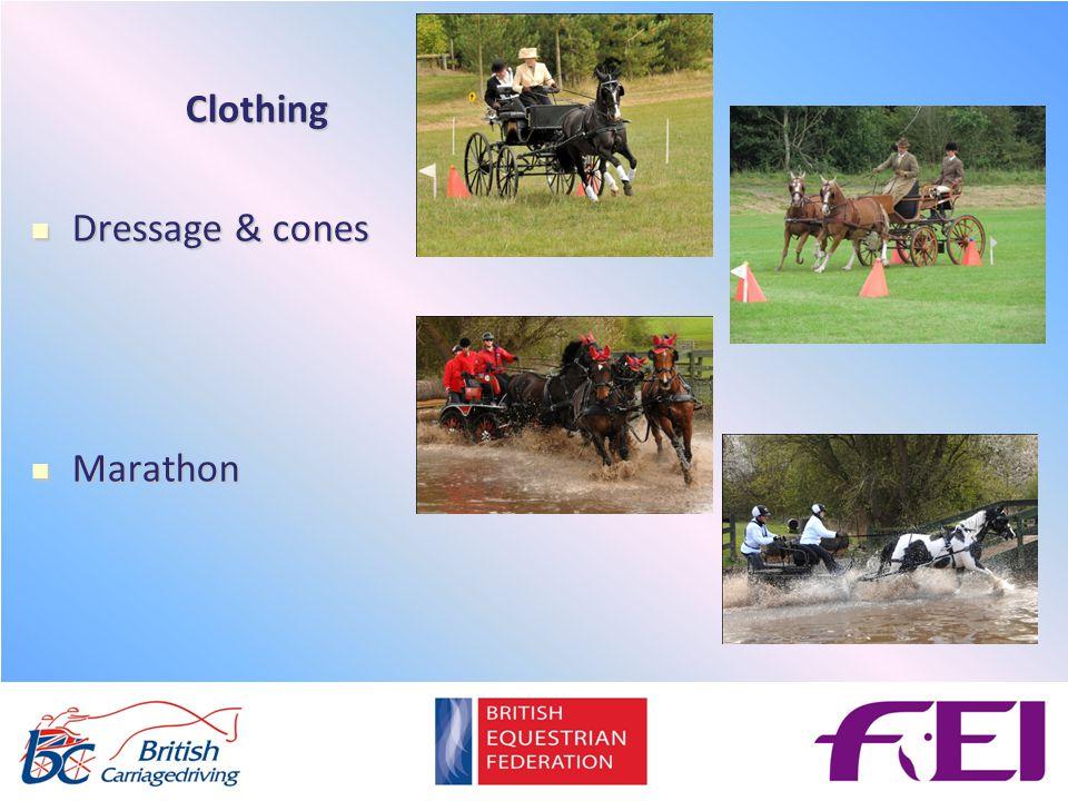 Clothing Dressage & cones Dressage & cones Marathon Marathon
