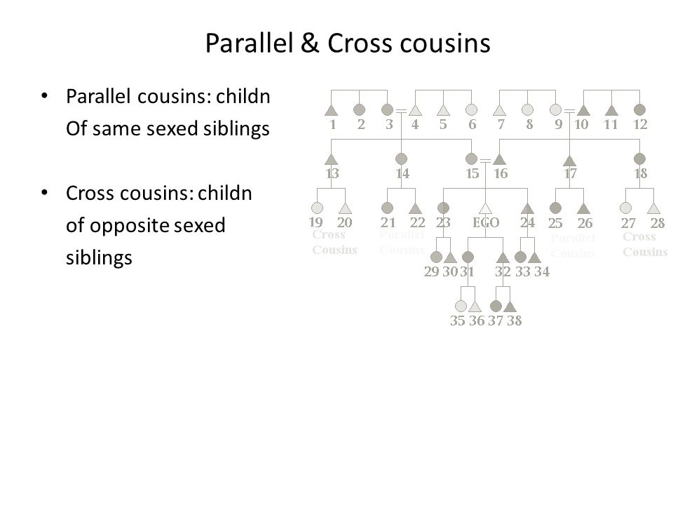 Kin Charts Tracing patrilineage & matrilineage Identifying types of cousins