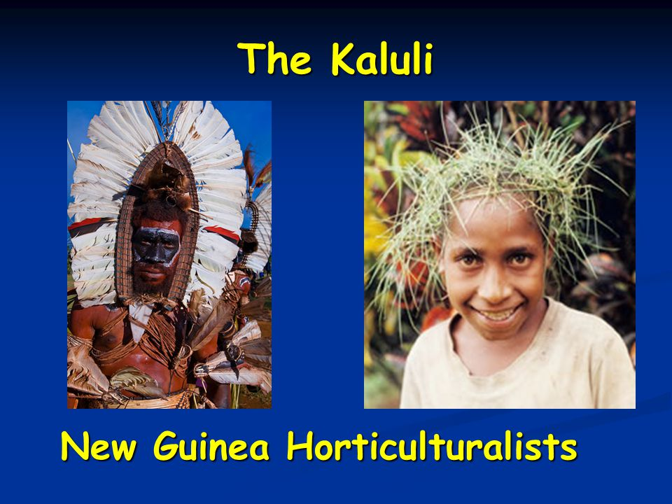 The Kaluli New Guinea Horticulturalists