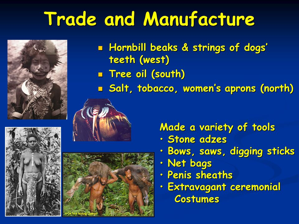 Trade and Manufacture Hornbill beaks & strings of dogs' teeth (west) Tree oil (south) Salt, tobacco, women's aprons (north) Made a variety of tools St
