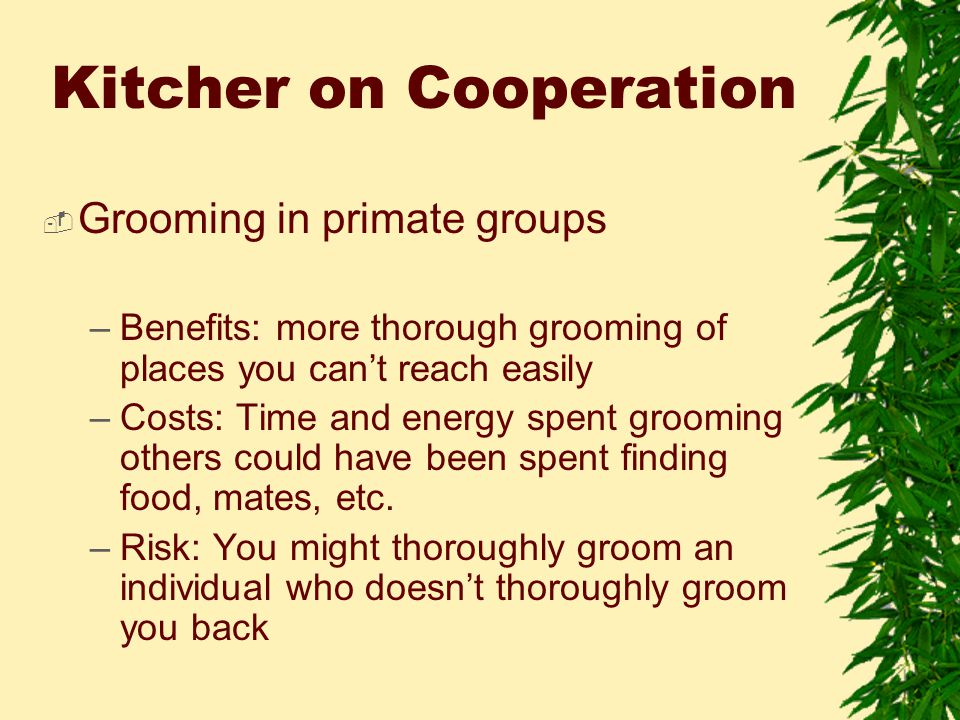 Kitcher on Cooperation  Grooming in primate groups –Benefits: more thorough grooming of places you can't reach easily –Costs: Time and energy spent grooming others could have been spent finding food, mates, etc.