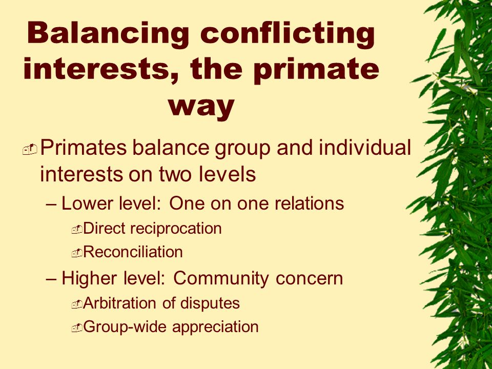 Balancing conflicting interests, the primate way  Primates balance group and individual interests on two levels –Lower level: One on one relations  Direct reciprocation  Reconciliation –Higher level: Community concern  Arbitration of disputes  Group-wide appreciation