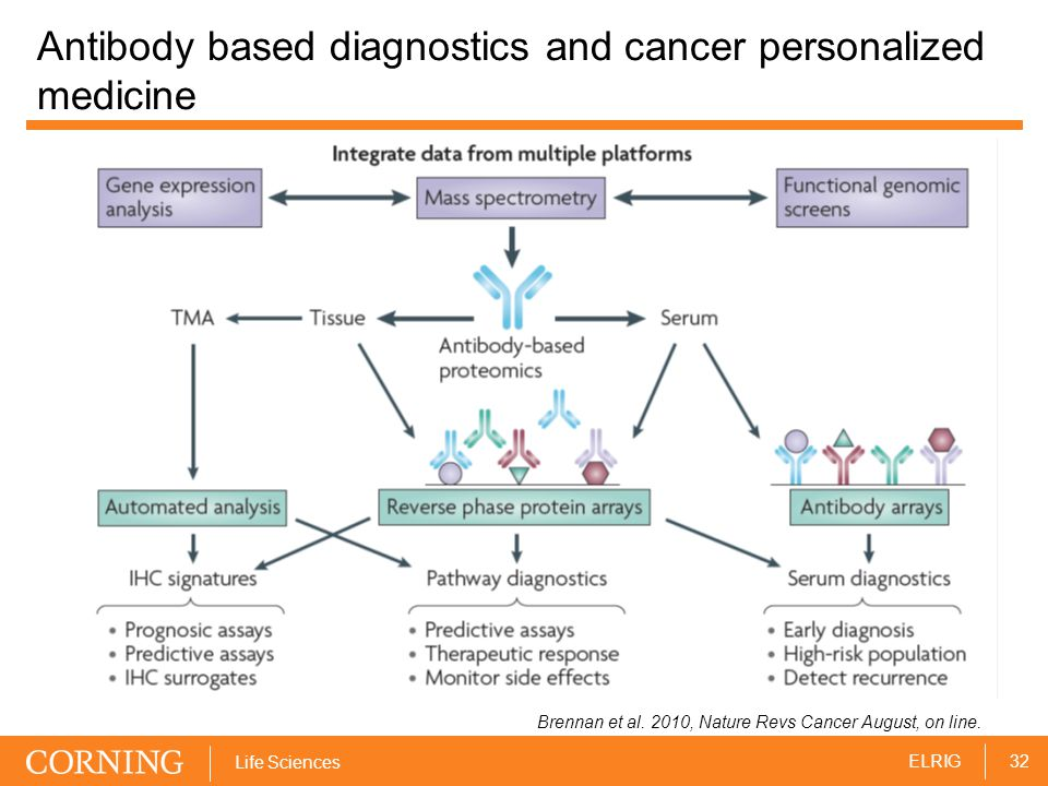 32ELRIG Life Sciences Antibody based diagnostics and cancer personalized medicine Brennan et al.