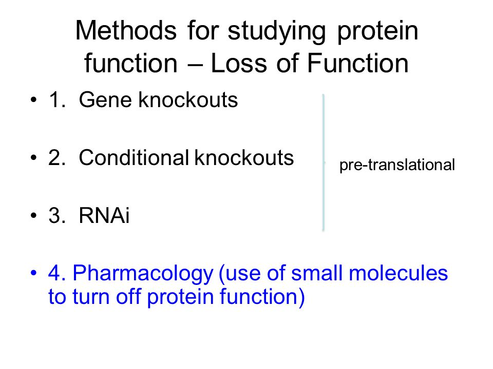 Methods for studying protein function – Loss of Function 1.