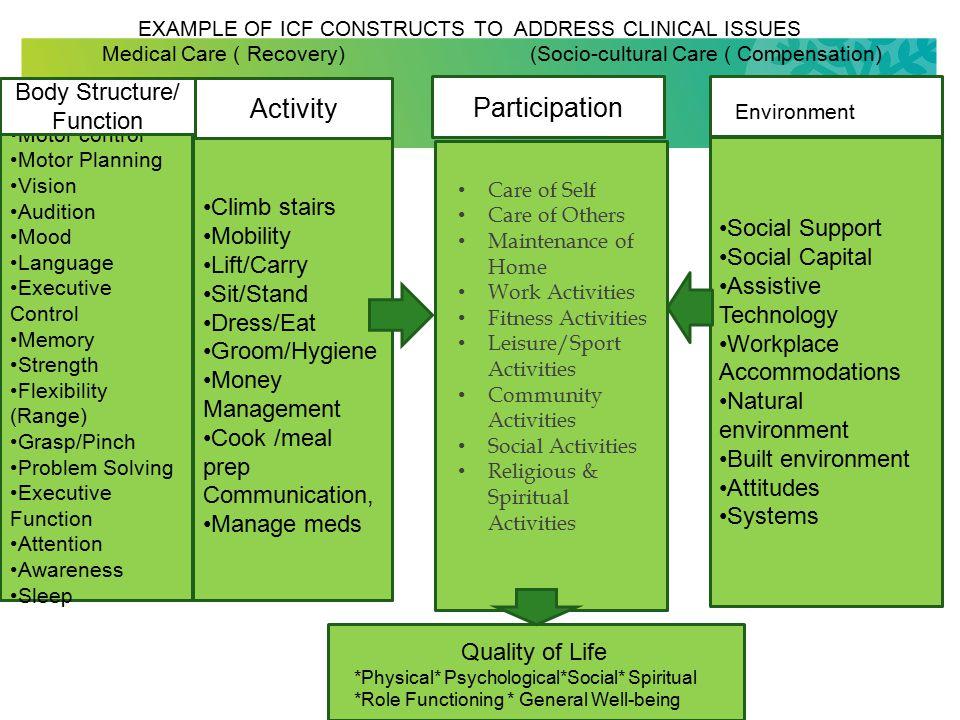 9 What is Participation? An Insider Perspective (Hammel et al 2008)