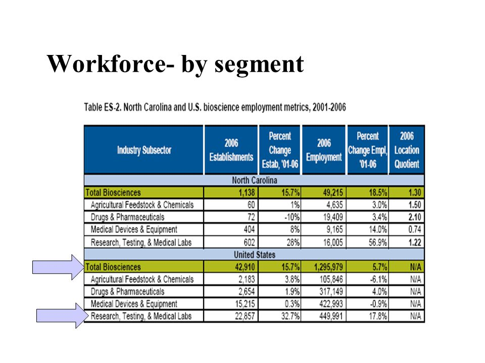 Workforce- by segment