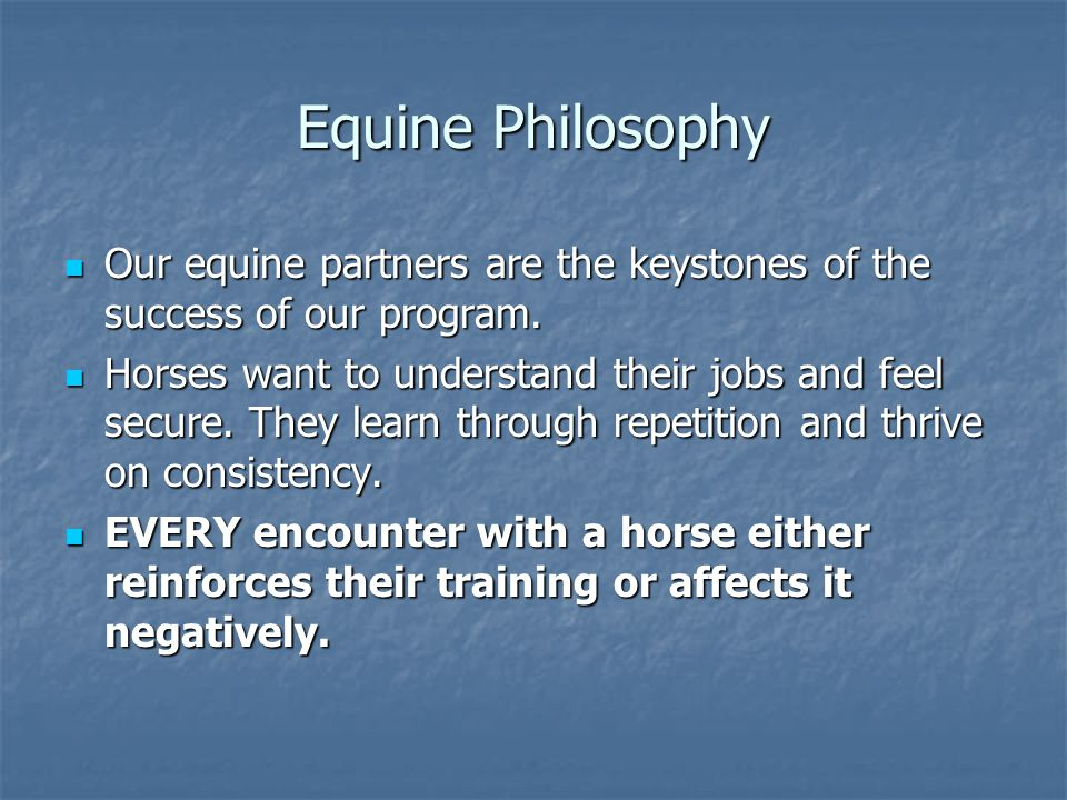Equine Philosophy Our equine partners are the keystones of the success of our program. Our equine partners are the keystones of the success of our pro