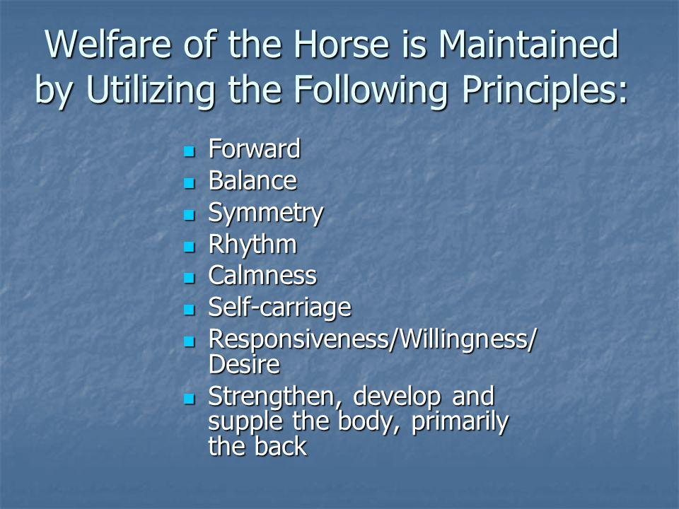 Welfare of the Horse is Maintained by Utilizing the Following Principles: Forward Forward Balance Balance Symmetry Symmetry Rhythm Rhythm Calmness Cal