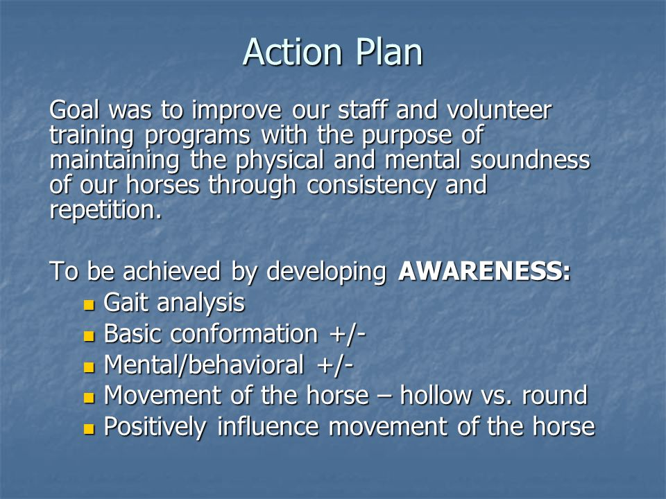 Action Plan Goal was to improve our staff and volunteer training programs with the purpose of maintaining the physical and mental soundness of our hor