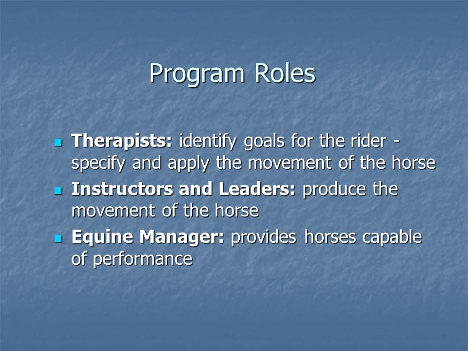 Program Roles Therapists: identify goals for the rider - specify and apply the movement of the horse Therapists: identify goals for the rider - specif