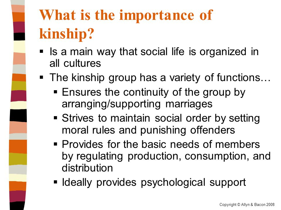 Copyright © Allyn & Bacon 2008 What is the importance of kinship.