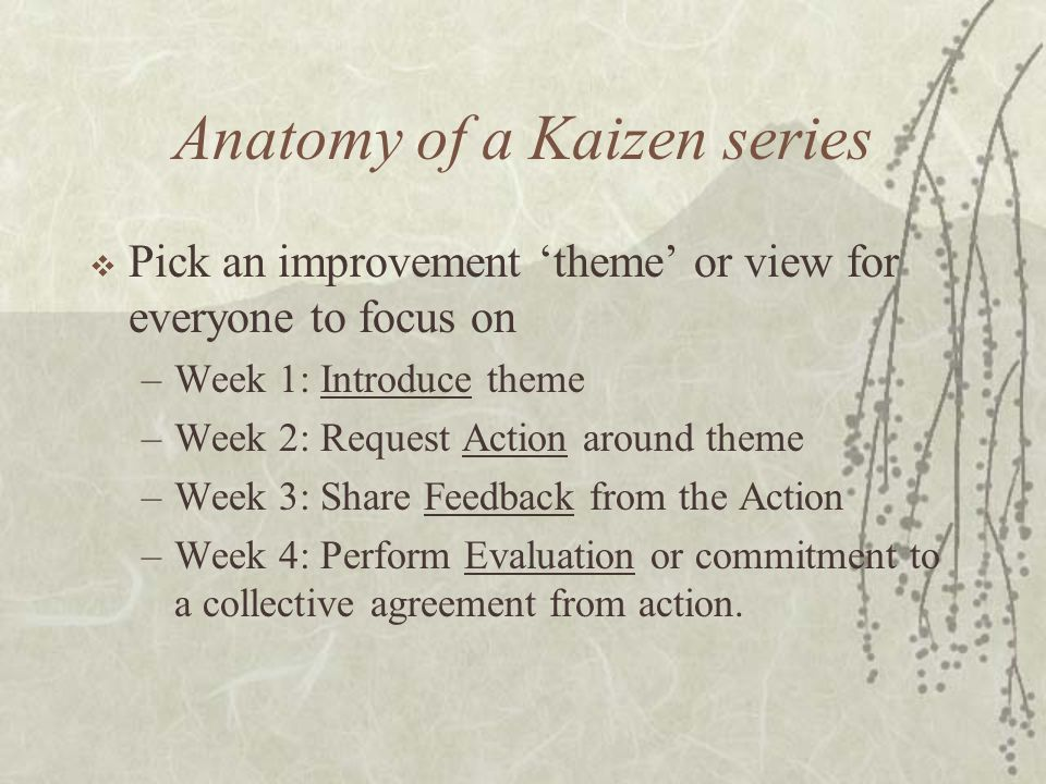 Anatomy of a Kaizen series  Pick an improvement 'theme' or view for everyone to focus on –Week 1: Introduce theme –Week 2: Request Action around theme –Week 3: Share Feedback from the Action –Week 4: Perform Evaluation or commitment to a collective agreement from action.