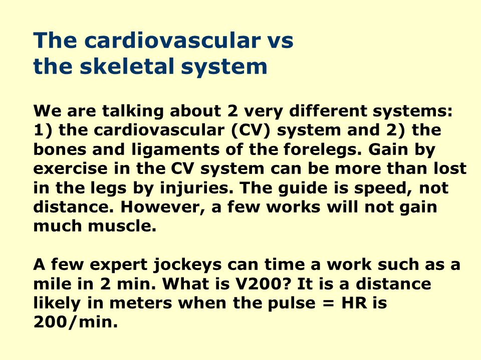 The cardiovascular vs the skeletal system We are talking about 2 very different systems: 1) the cardiovascular (CV) system and 2) the bones and ligaments of the forelegs.