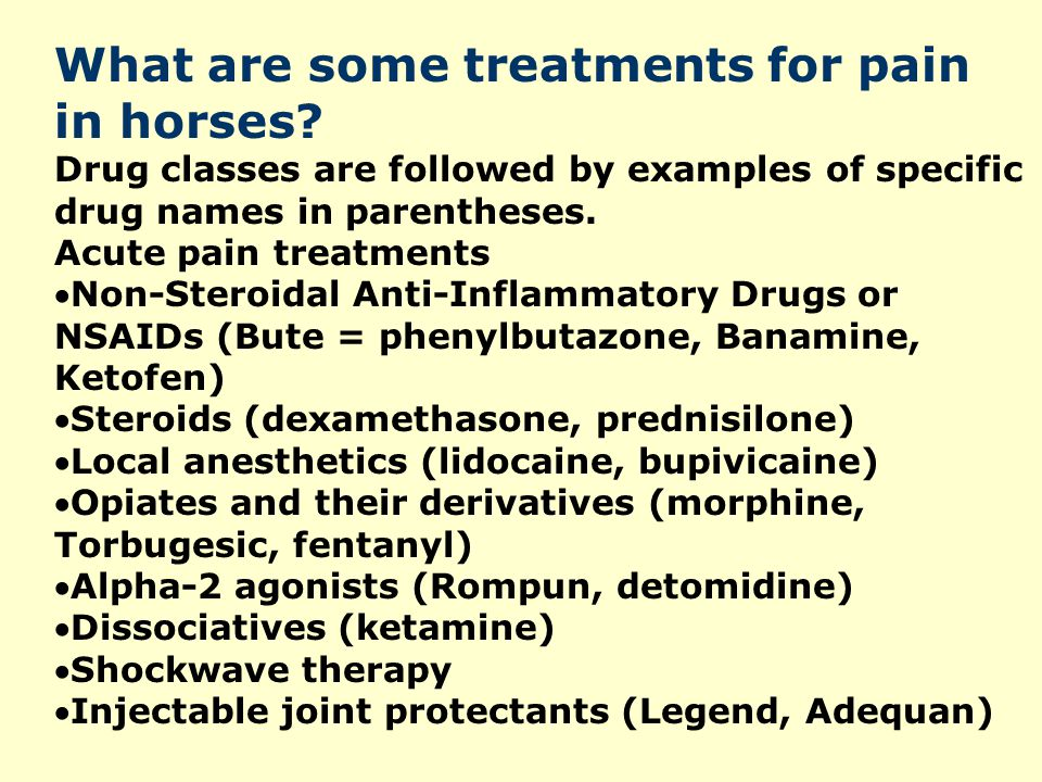 What are some treatments for pain in horses? Drug classes are followed by examples of specific drug names in parentheses. Acute pain treatments Non-S