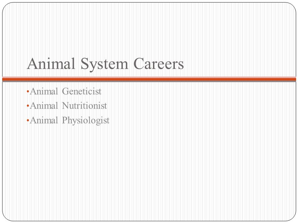 Animal Geneticist Animal Nutritionist Animal Physiologist Animal System Careers