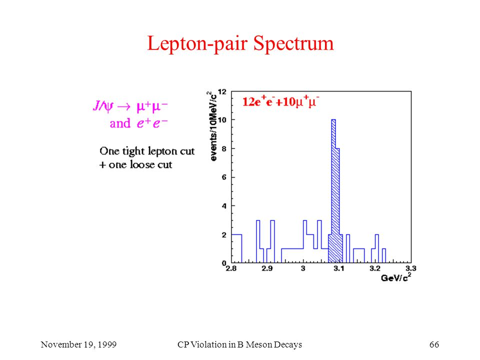 November 19, 1999CP Violation in B Meson Decays66 Lepton-pair Spectrum