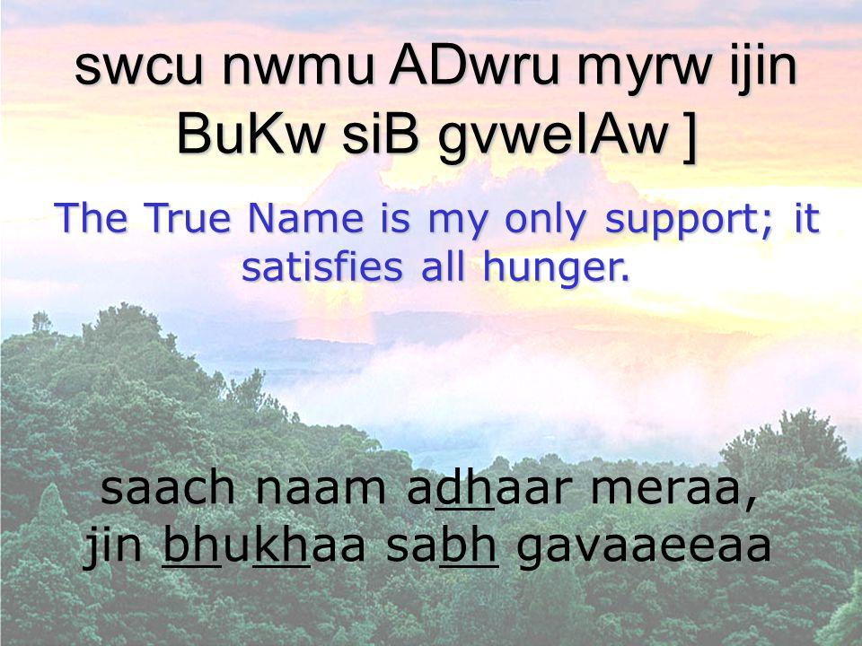 saach naam adhaar meraa, jin bhukhaa sabh gavaaeeaa swcu nwmu ADwru myrw ijin BuKw siB gvweIAw ] The True Name is my only support; it satisfies all hu