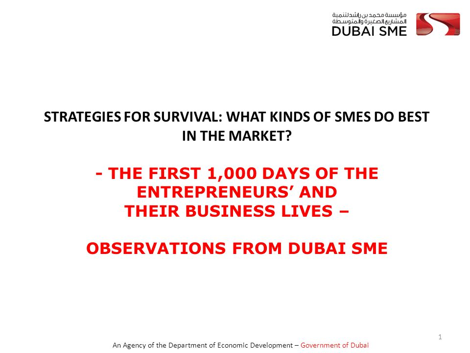 An Agency of the Department of Economic Development – Government of Dubai Strategies for Survival Business Learning and Knowledge Building  Don't stop learning, you do not have monopoly of knowledge  Beware of the competition, be thankful for it to spur you out of complacency and to innovate to differentiate.