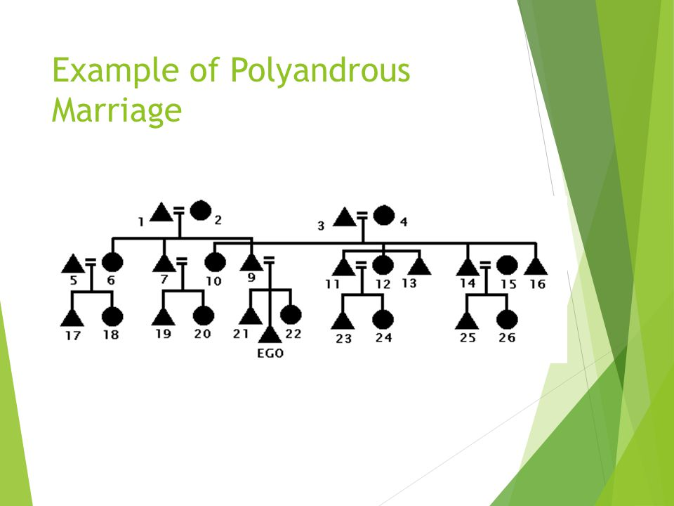 Example of Polygynous Marriage This is Sororal Polygyny