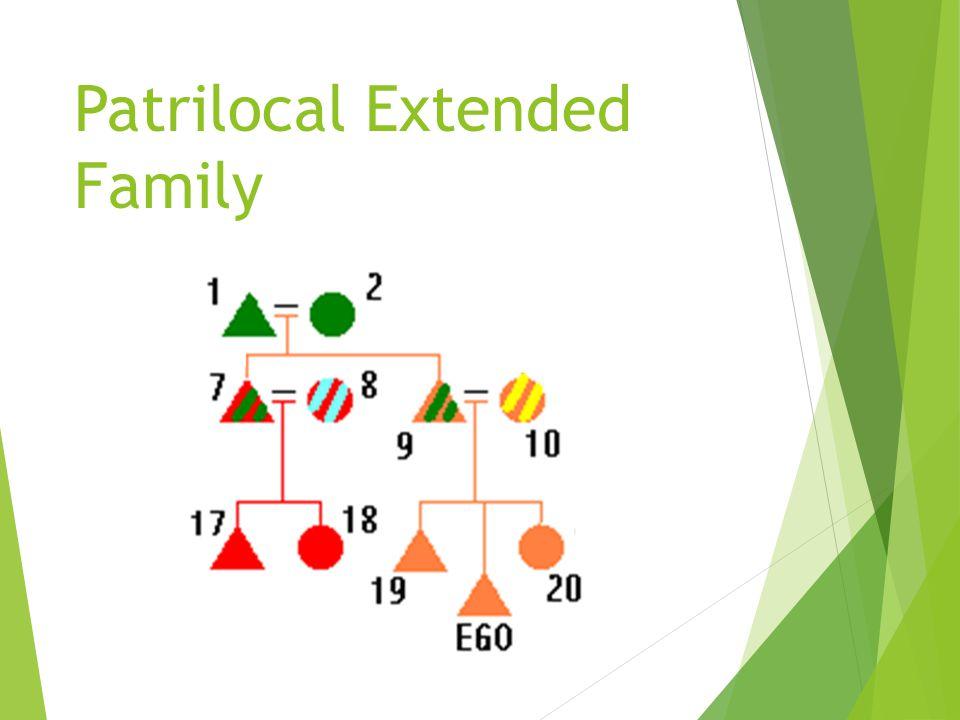 Nuclear Families in a Standard Kinship Diagram.