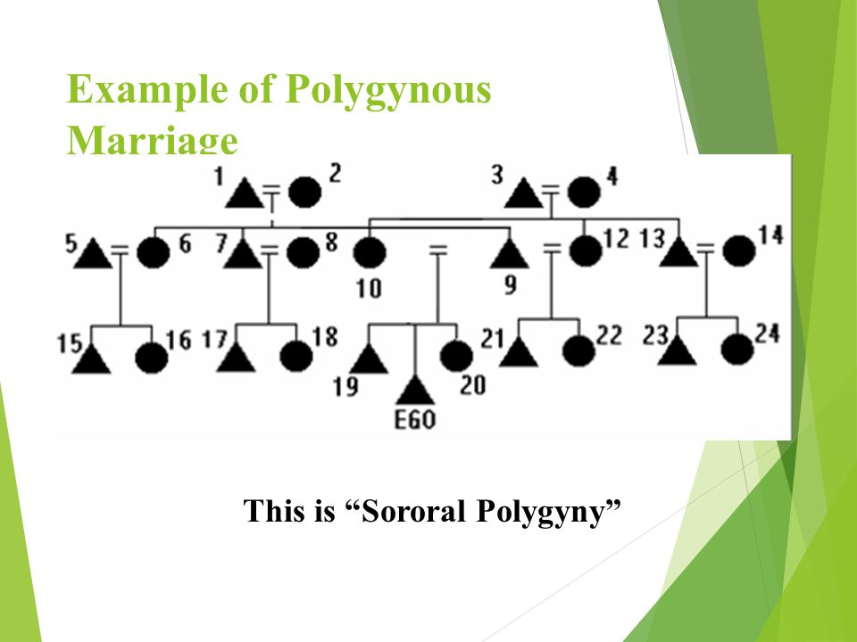 Numbers of Spouses in a Family  Monogamy = the marriage of one woman to one man  Polygamy = the marriage of multiple wives OR husbands to a member of the opposite sex (a general term).