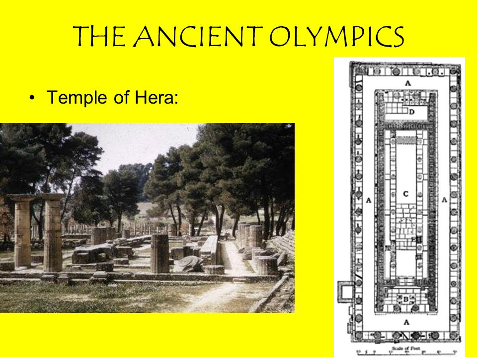 THE ANCIENT OLYMPICS ANCIENT OLYMPIC EVENTS: –Jump: Jumpers used lead or stone weights –Shaped like phone receivers (halteres) –Increased distance –Held in front during ascent –Brought behind and dropped during descent.