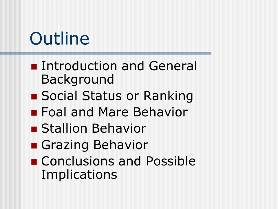 Outline Introduction and General Background Social Status or Ranking Foal and Mare Behavior Stallion Behavior Grazing Behavior Conclusions and Possible Implications