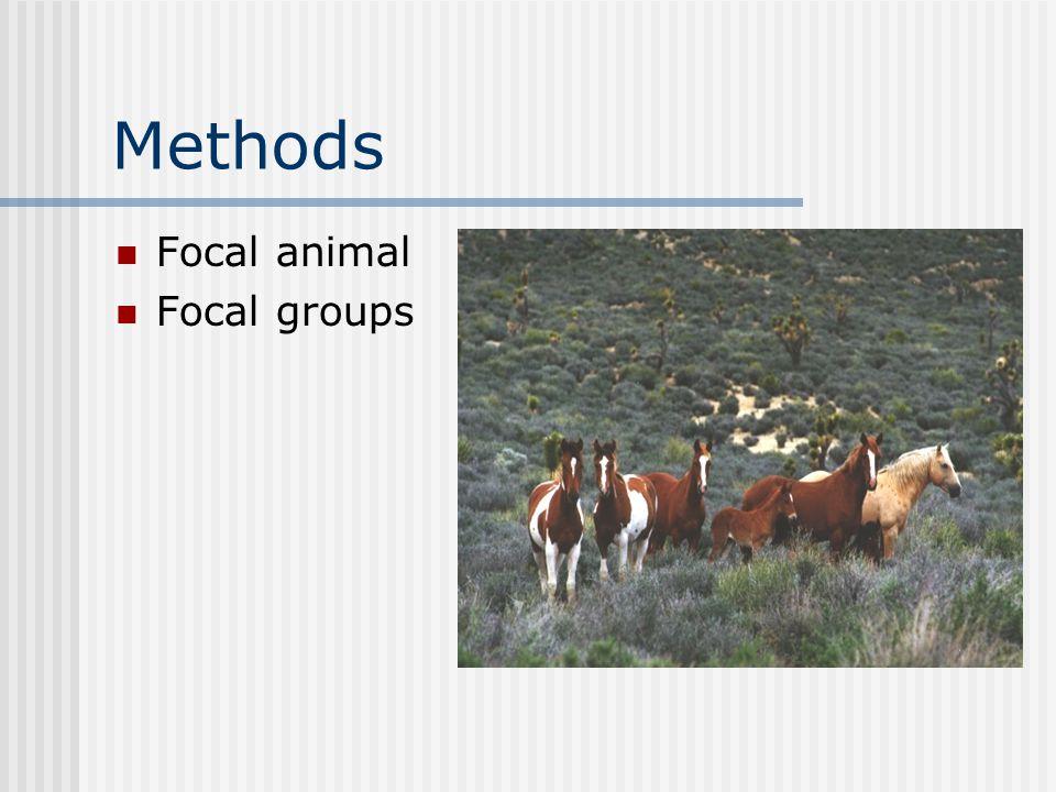 Methods Focal animal Focal groups