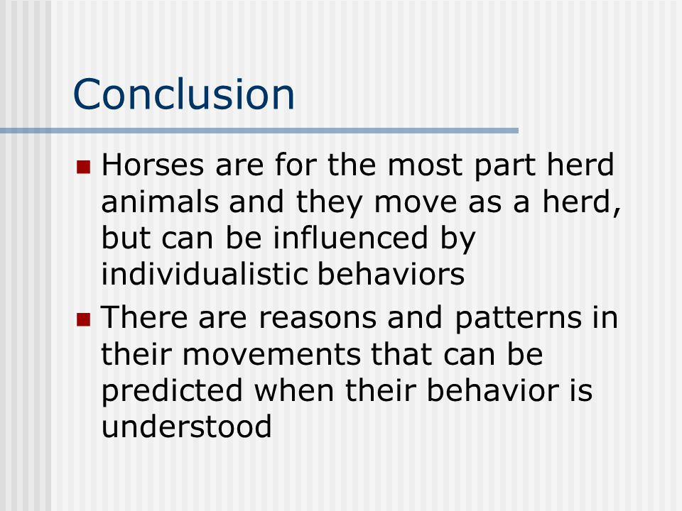 Conclusion Horses are for the most part herd animals and they move as a herd, but can be influenced by individualistic behaviors There are reasons and patterns in their movements that can be predicted when their behavior is understood