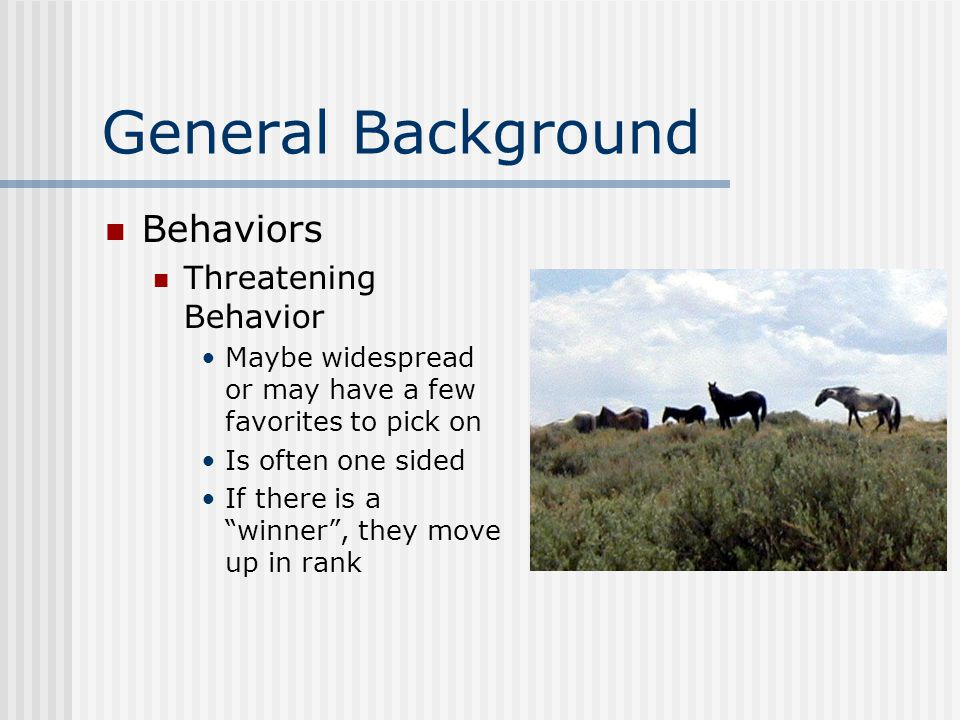 General Background Behaviors Threatening Behavior Maybe widespread or may have a few favorites to pick on Is often one sided If there is a winner , they move up in rank