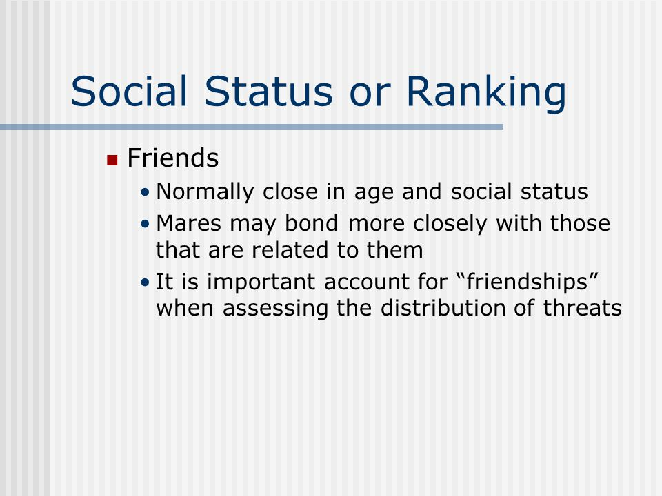Social Status or Ranking Friends Normally close in age and social status Mares may bond more closely with those that are related to them It is important account for friendships when assessing the distribution of threats