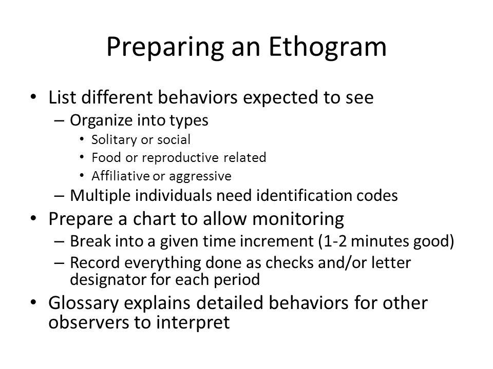 Preparing an Ethogram List different behaviors expected to see – Organize into types Solitary or social Food or reproductive related Affiliative or aggressive – Multiple individuals need identification codes Prepare a chart to allow monitoring – Break into a given time increment (1-2 minutes good) – Record everything done as checks and/or letter designator for each period Glossary explains detailed behaviors for other observers to interpret