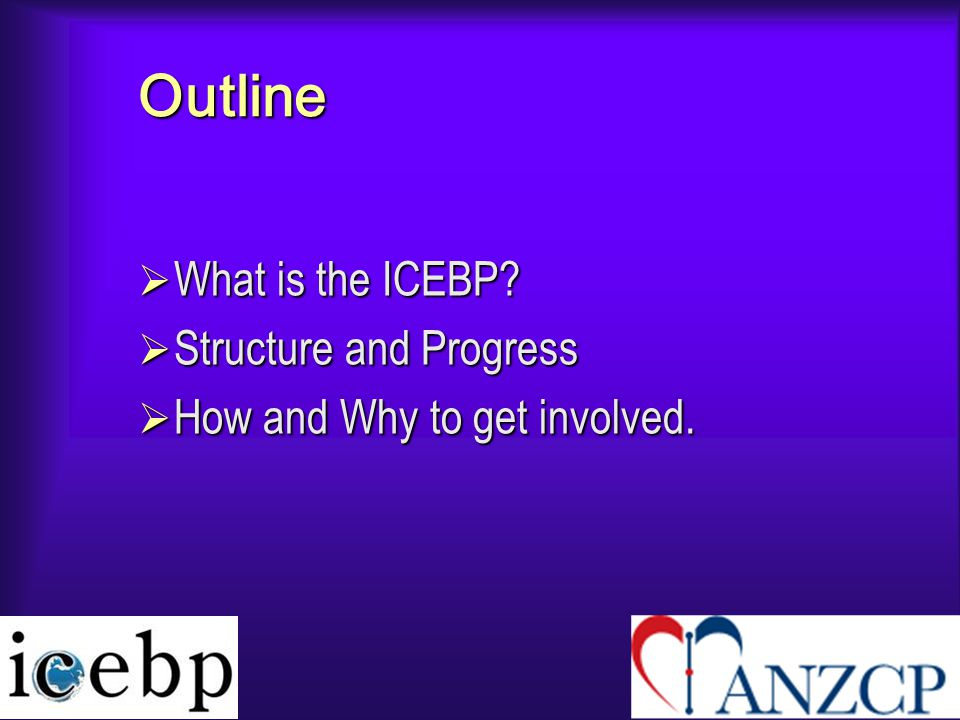 Outline  What is the ICEBP?  Structure and Progress  How and Why to get involved.
