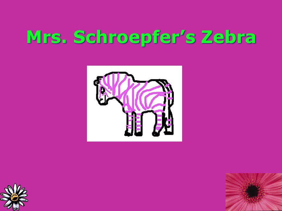 Mrs. Schroepfer's Zebra