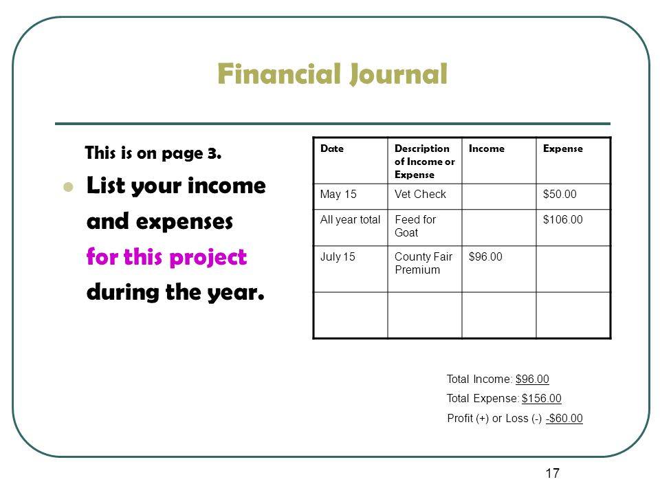 17 Financial Journal This is on page 3. List your income and expenses for this project during the year. DateDescription of Income or Expense IncomeExp