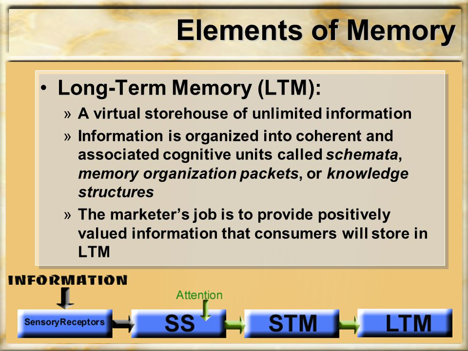 Elements of Memory Long-Term Memory (LTM): »A virtual storehouse of unlimited information »Information is organized into coherent and associated cogni