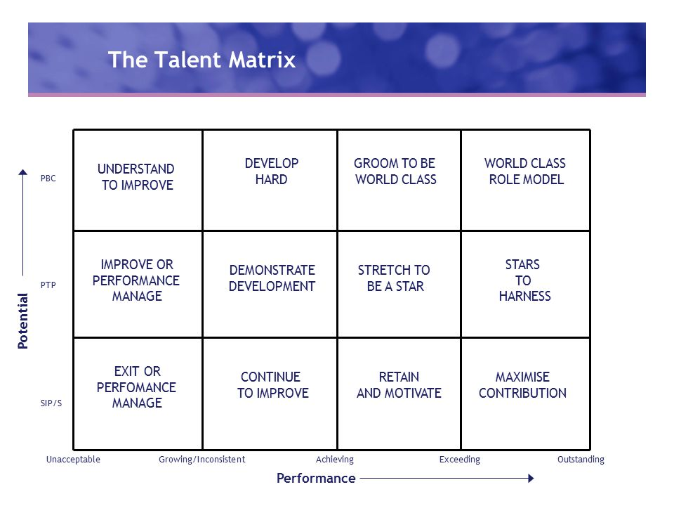 The Talent Matrix UnacceptableGrowing/InconsistentAchievingExceedingOutstanding Performance Potential SIP/S PTP PBC WORLD CLASS ROLE MODEL STARS TO HARNESS MAXIMISE CONTRIBUTION GROOM TO BE WORLD CLASS STRETCH TO BE A STAR RETAIN AND MOTIVATE DEVELOP HARD DEMONSTRATE DEVELOPMENT CONTINUE TO IMPROVE UNDERSTAND TO IMPROVE IMPROVE OR PERFORMANCE MANAGE EXIT OR PERFOMANCE MANAGE