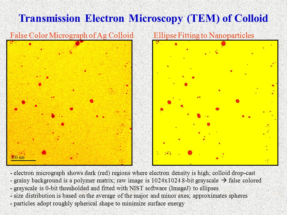 Transmission Electron Microscopy (TEM) of Colloid False Color Micrograph of Ag ColloidEllipse Fitting to Nanoparticles - electron micrograph shows dark (red) regions where electron density is high; colloid drop-cast - grainy background is a polymer matrix; raw image is 1024x1024 8-bit grayscale  false colored - grayscale is 0-bit thresholded and fitted with NIST software (ImageJ) to ellipses - size distribution is based on the average of the major and minor axes; approximates spheres - particles adopt roughly spherical shape to minimize surface energy