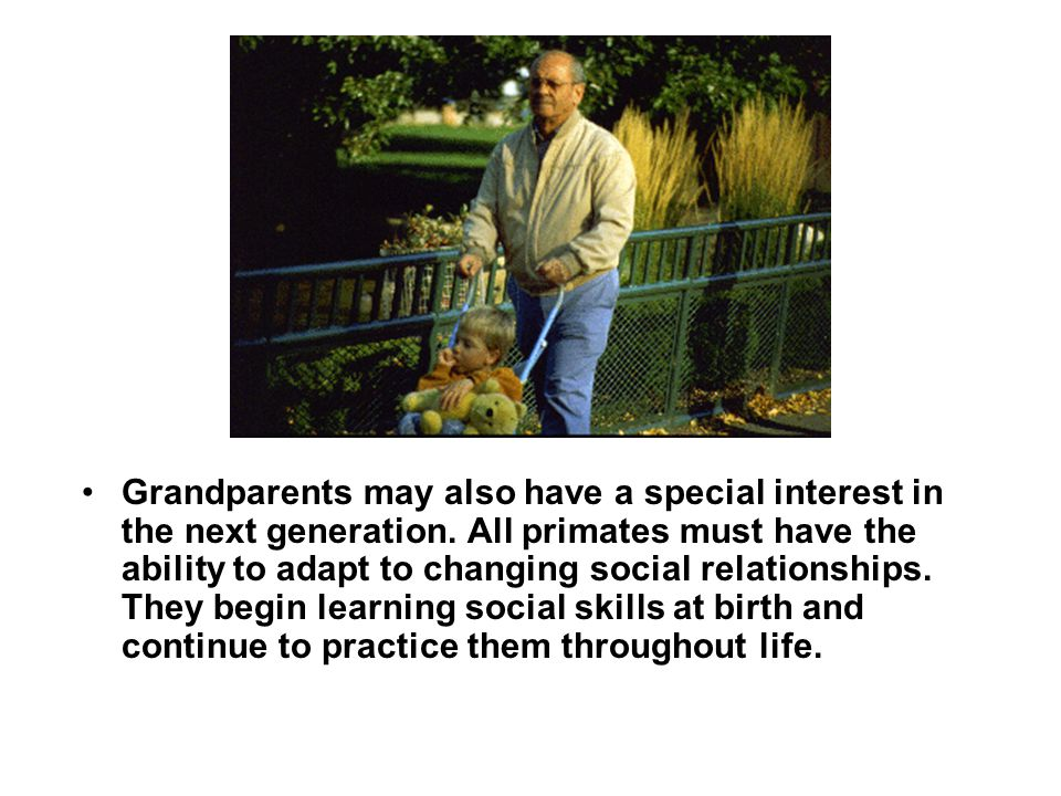 Grandparents may also have a special interest in the next generation. All primates must have the ability to adapt to changing social relationships. Th