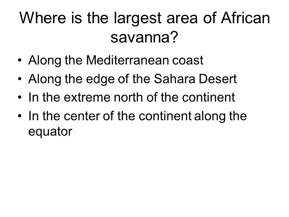 Where is the largest area of African savanna? Along the Mediterranean coast Along the edge of the Sahara Desert In the extreme north of the continent