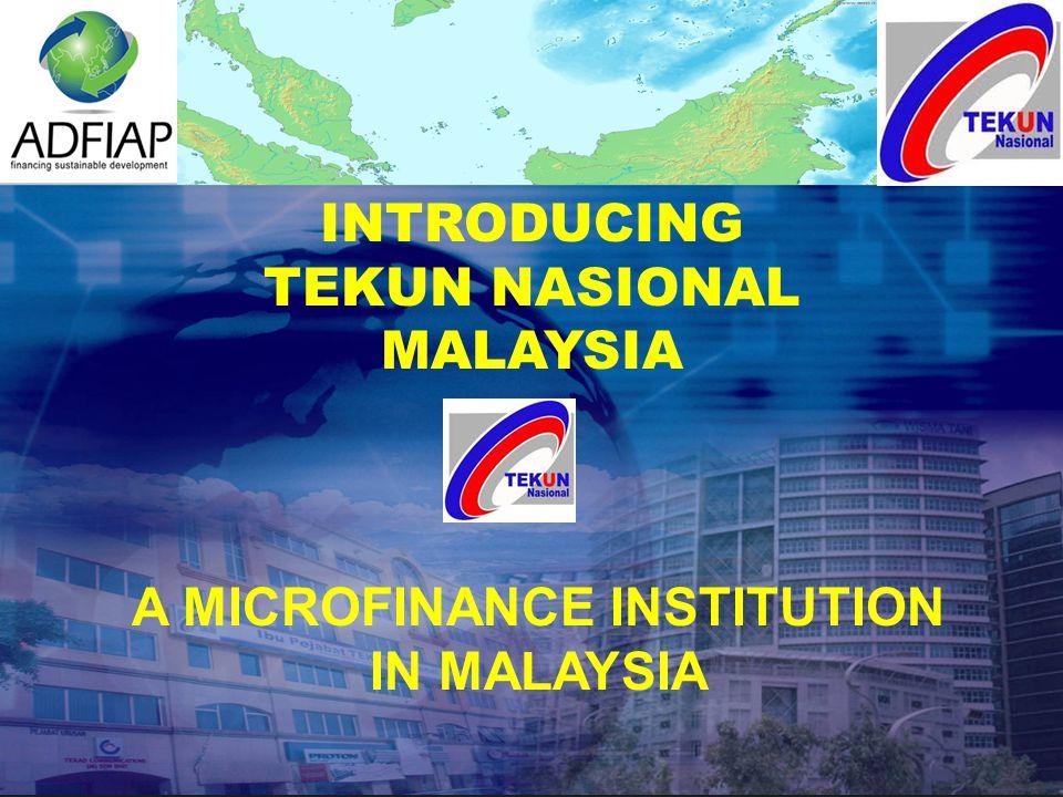 A MICROFINANCE INSTITUTION IN MALAYSIA INTRODUCING TEKUN NASIONAL MALAYSIA