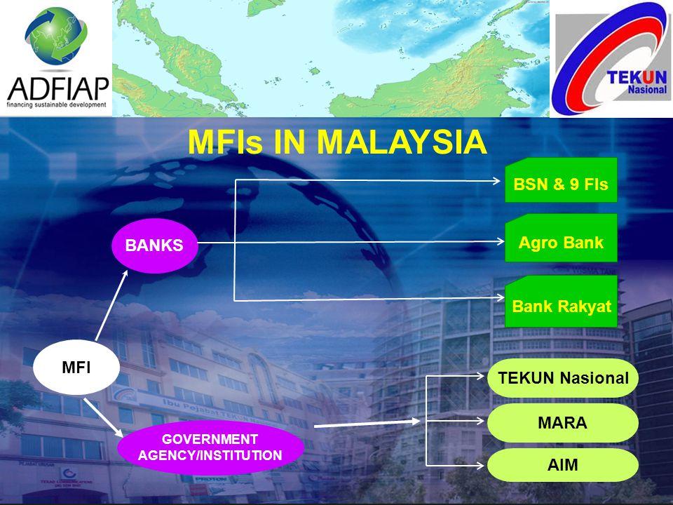 MFIs IN MALAYSIA MFI GOVERNMENT AGENCY/INSTITUTION BANKS BSN & 9 FIs Agro Bank Bank Rakyat TEKUN Nasional MARA AIM