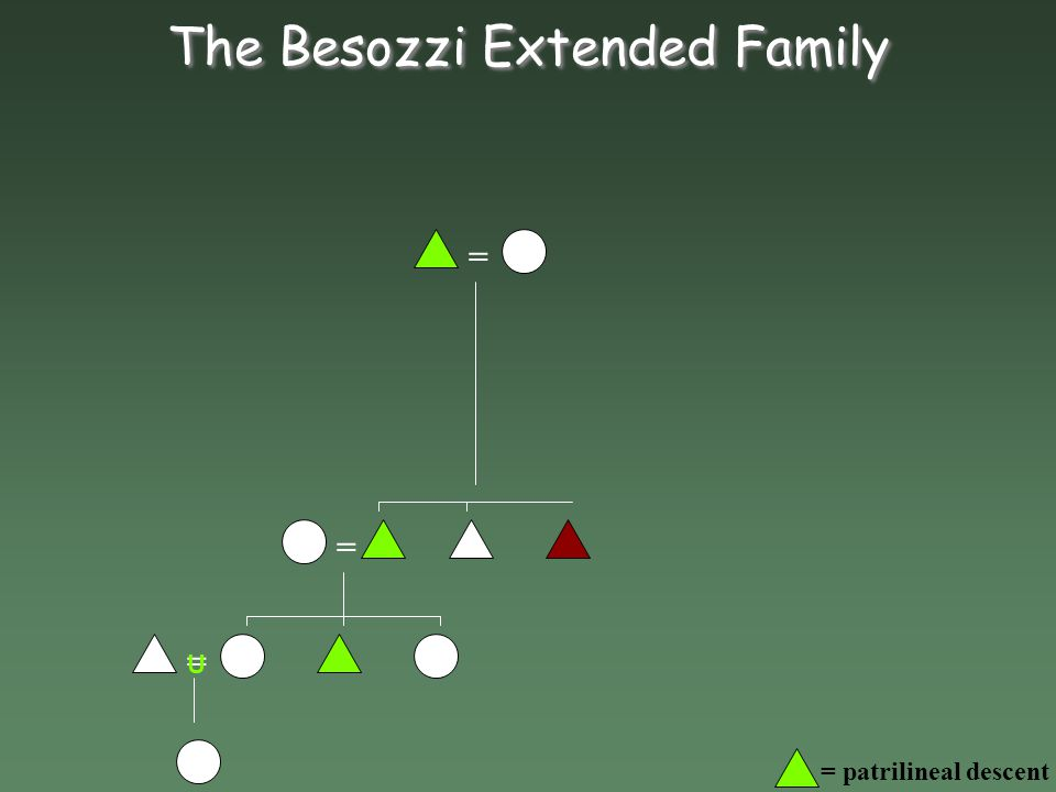The Besozzi Nuclear Family =