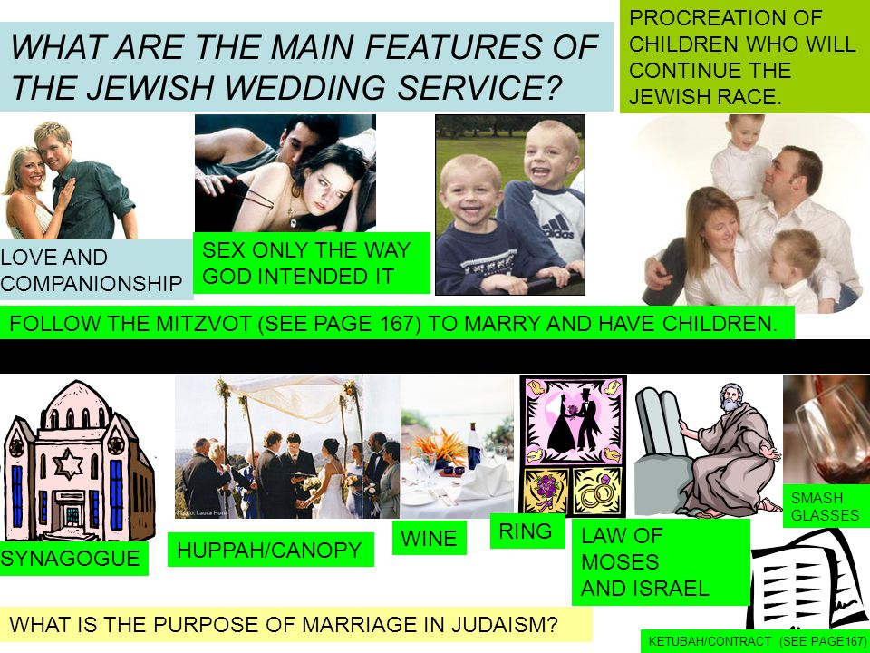 WHAT ARE THE MAIN FEATURES OF THE JEWISH WEDDING SERVICE? WHAT IS THE PURPOSE OF MARRIAGE IN JUDAISM? LOVE AND COMPANIONSHIP SEX ONLY THE WAY GOD INTE