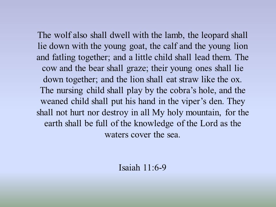 The wolf also shall dwell with the lamb, the leopard shall lie down with the young goat, the calf and the young lion and fatling together; and a little child shall lead them.