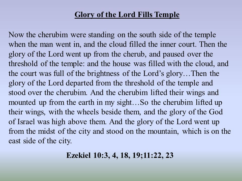 Glory of the Lord Fills Temple Now the cherubim were standing on the south side of the temple when the man went in, and the cloud filled the inner court.